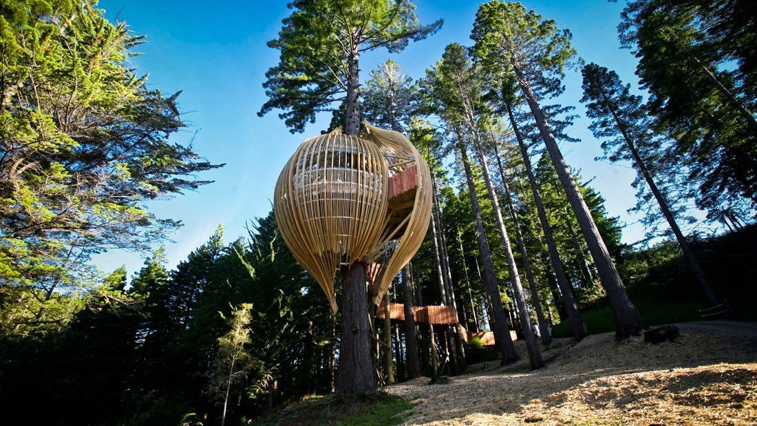 Redwood Treehouse